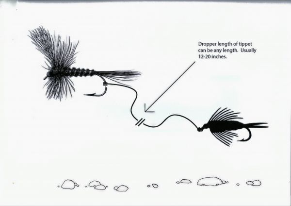 dry/dropper diagram